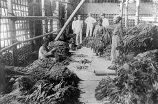 Soal UAS Sejarah Indonesia: Kolonialisme Pemerintah Belanda