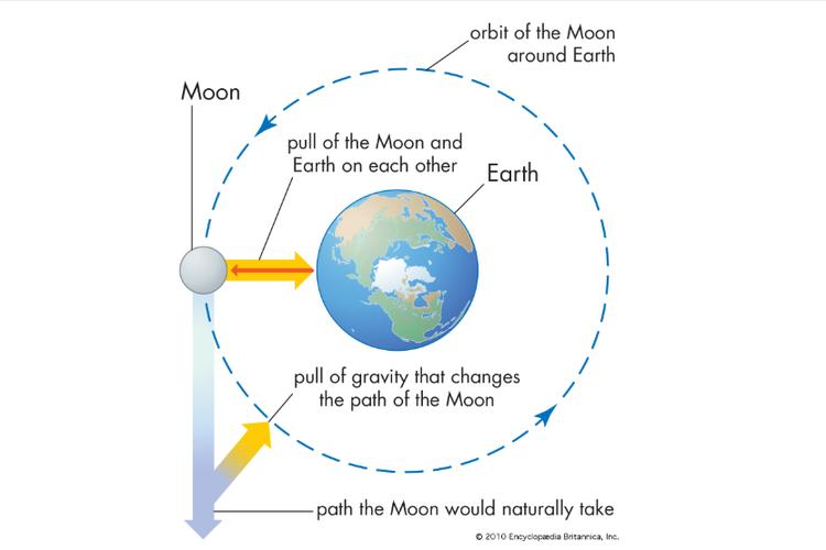 Definisi gravitasi adalah sebagai gaya tarik-menarik yang terjadi antara semua partikel yang memiliki massa atau bobot di semesta.
