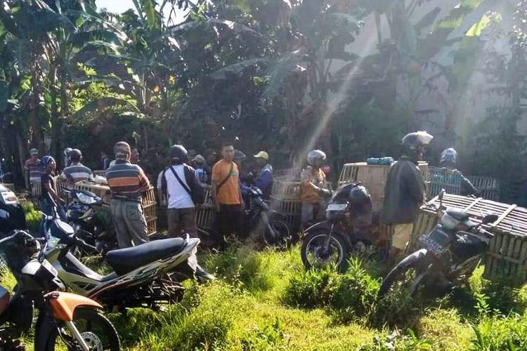 Pedagang ayam yang pindah ke lapangan karena pasar tradisional di kecamatan kalisat Jember dibatasi jam penjualannya