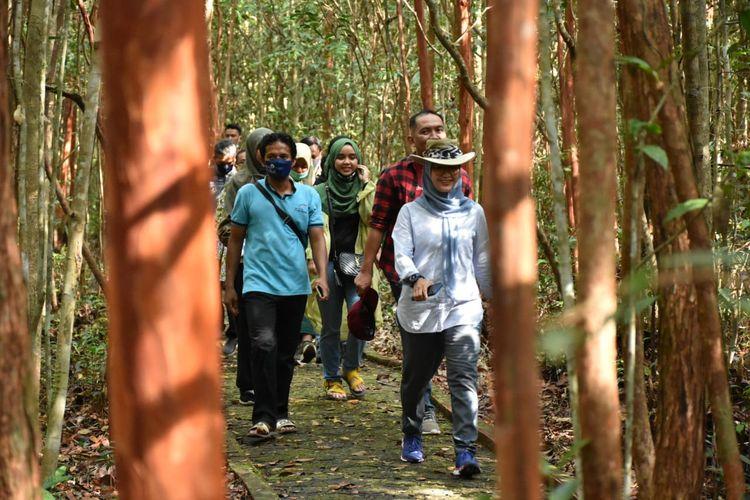 Hutan pohon pelawan di Namang, Bangka Tengah.