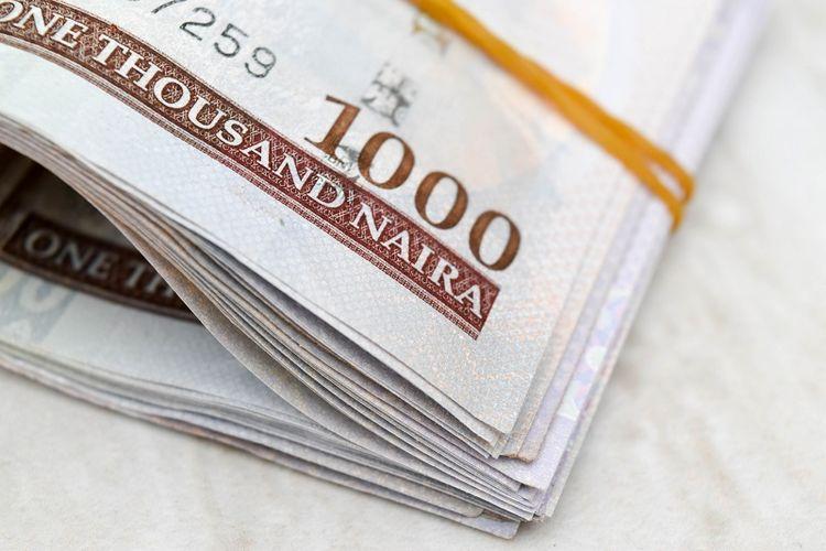 Mata uang Nigeria, Naira