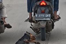 Laporan Kasus Seekor Anjing Dicuri dan Diseret Pakai Motor Ditolak Polisi