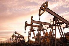 Lapangan Gas Kepodang Siap Beroperasi Kembali