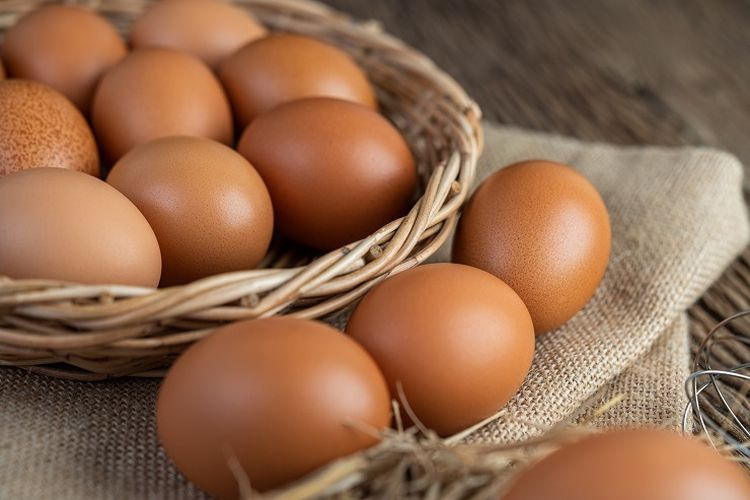 Ilustrasi telur ayam