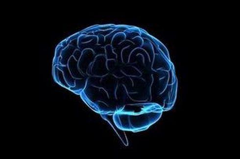 Hidup Setelah Mati Otak, Mungkinkah?