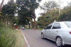 Pengguna Jalan Diingatkan Potensi Pohon Tumbang dan Longsor di Jalur Puncak