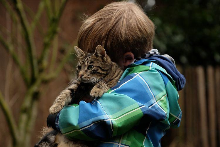 Ilustrasi anak memeluk kucing.