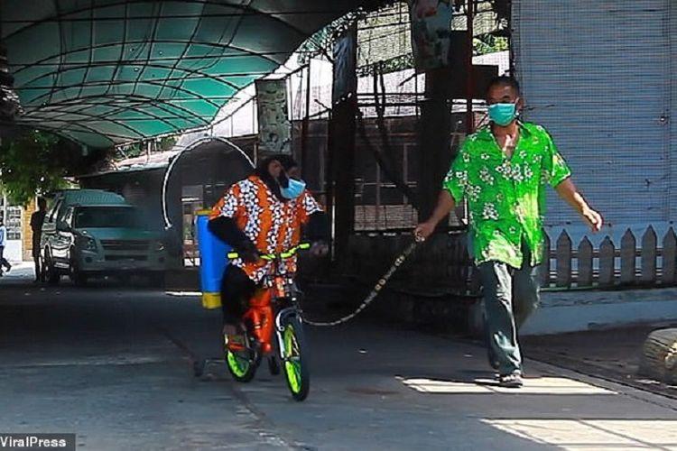 Potongan dari video yang viral memperlihatkan seekor simpanse mengenakan baju Hawaii, celana denim, menaik sepeda dan menyemprotkan disinfektan di kebun binatang Thailand.