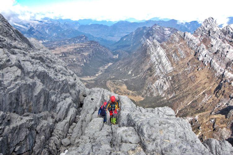 Gunung Puncak Jaya Papua