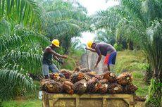 Kemenperin: Investasi Senilai Rp 32,5 Triliun Bakal Masuk ke Industri Agro