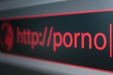 Kemenkominfo Berantas Lebih dari 1 Juta Situs Negatif Tahun Ini