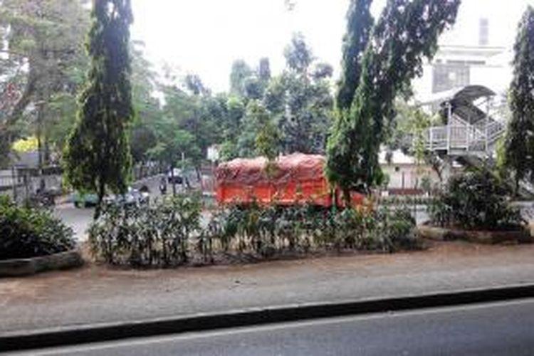 Tanaman layu di Jakarta Utara.