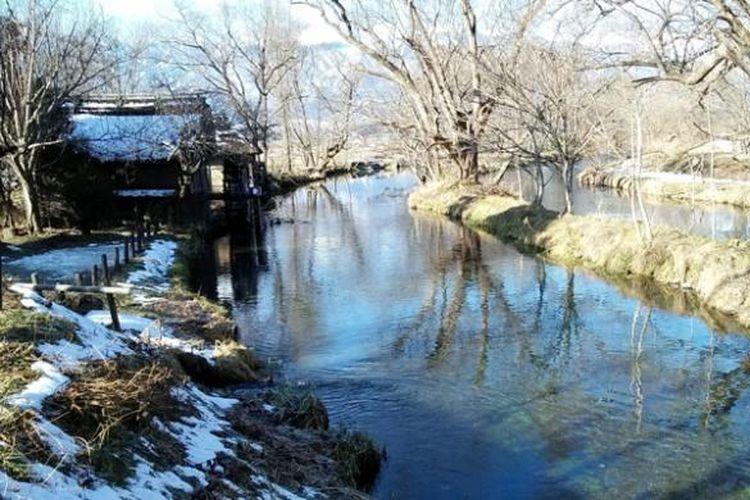 Kincir air ikonik dan kejernihan Sungai Tadegawa yang membelah Perkebunan Wasabi Daio, Nagano, Jepang.