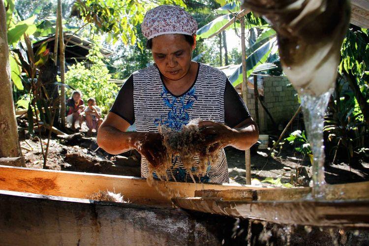 Yahulin (54), warga Kampung Karatung satu, Manganitu, Kabupaten Kepulauan Sangihe sedang mencuci pati pohon sagu untuk dijadikan tepung sagu.