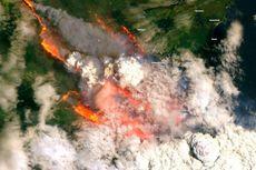 Kebakaran Telah Melahap Seperlima Hutan di Australia