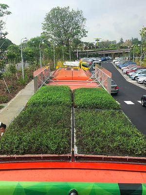 Tanaman yang digunakan pun merupakan tumbuhan yang kuat dan disesuaikan dengan iklim lokal.