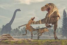 Tak Hanya T-rex, Ini Bukti Dinosaurus Karnivora Besar Pernah Hidup di Australia