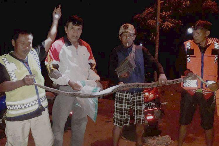 Tim SAR ELPEJE Kabupaten Ngawi Jawa Timur berhasil mengevakuasi ular pyton sepanjang 3 meter yang akan memakan ayam milik warga.