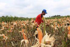 Kemendesa PDTT Proyeksikan 32 Kabupaten Tertinggal Terentaskan pada 2024