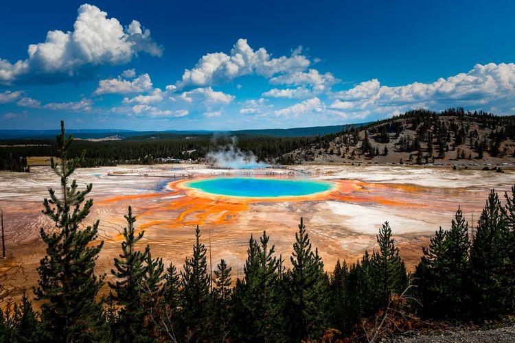 Ilustrasi Taman Nasional Yellowstone, Amerika Serikat.