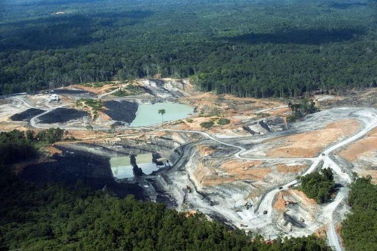 Pegiat lingkungan menyebut terdapat nyaris 1.800 lubang tambang di Kaltim. Sementara jumlah versi pemerintah hanya mencapai sekitar 500 lubang.