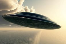 [POPULER INTERNASIONAL] Kisah Manusia Pohon | Penampakan UFO Pertama