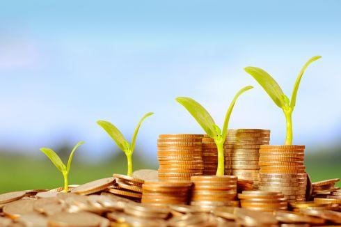 [POPULER MONEY] Ide Bisnis Jadi Crazy Rich | Profil Orang Kaya Termuda