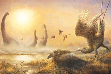 Langka, Ahli Temukan Burung Era Dinosaurus dengan Paruh Mirip Sabit