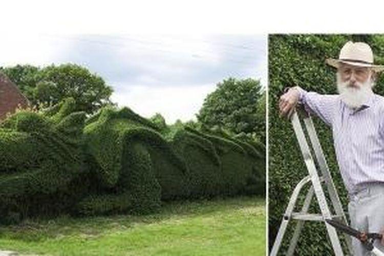 John Brooker (kiri) memangkas tanaman di depan rumahnya berbentuk naga. Brooker sudah melakukan hal ini selama 13 tahun.