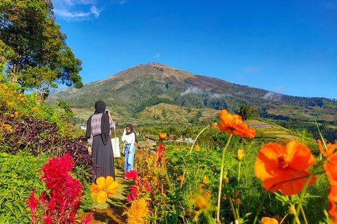 Itinerary Wisata Sehari di Kabupaten Magelang, Kunjungi Saat Buka Lagi