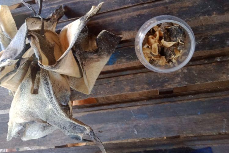 Kerupuk ikan buntal yang diduga menyebabkan dua anak-anak keracunan