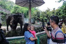 Kadispar DKI Jakarta: Pemulihan Pariwisata Tergantung Sektor Ekonomi