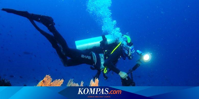 Wisata Diving Di Tambrauw Papua Barat Lihat Benda Sisa Pd Ii