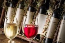 Wine dari Luar Angkasa Ini Menua Lebih Cepat Daripada di Bumi, Kok Bisa?