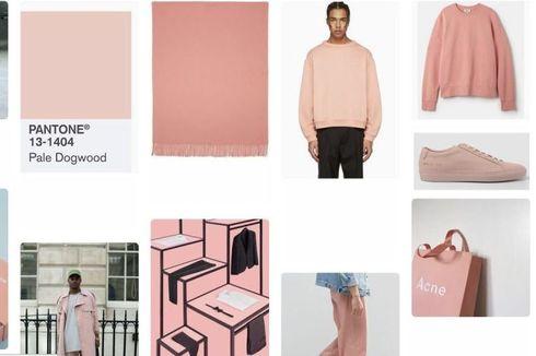 Mengenal Millenial Pink, Warna yang Jadi Obsesi Dunia Desain