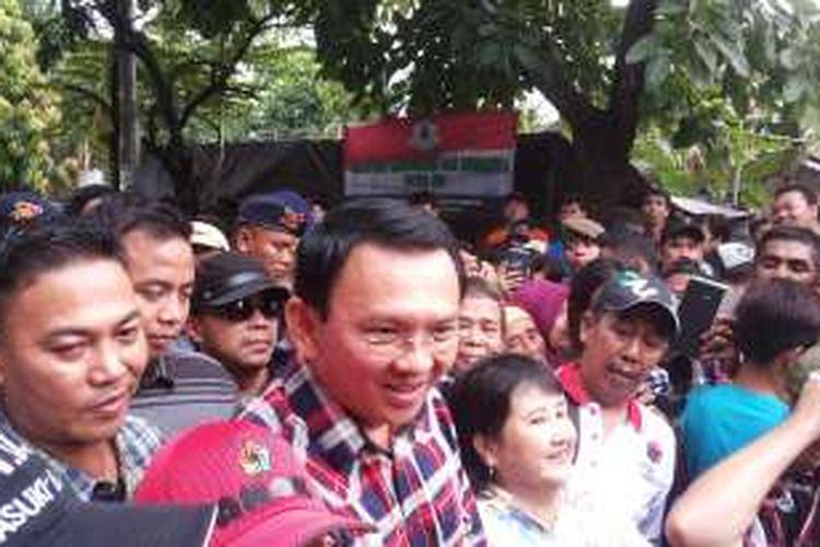 Calon gubernur DKI Jakarta nomor dua, Basuki Tjahaja Purnama alias Ahok saat kunjungan kampanye ke Pademangan Timur, Pademangan, Jakarta Timur, Jumat (18/11/2016).