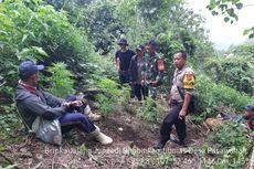 Polisi Sisir Kawasan Gunung Guntur, Cari Ladang Ganja Lainnya