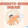 INFOGRAFIK: Mosquito-borne Disease