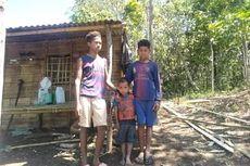 Kisah Pilu 3 Bocah di Ngada, Hidup di Tengah Kebun Tanpa Orangtua