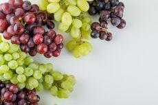Manfaat Anggur, Buah yang Kaya Antioksidan