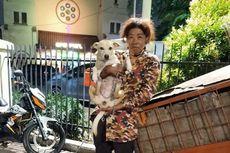 Kisah Viral, Seorang Ibu Tinggal di Gerobak bersama Anjing dan Kucing di Pasar Baru