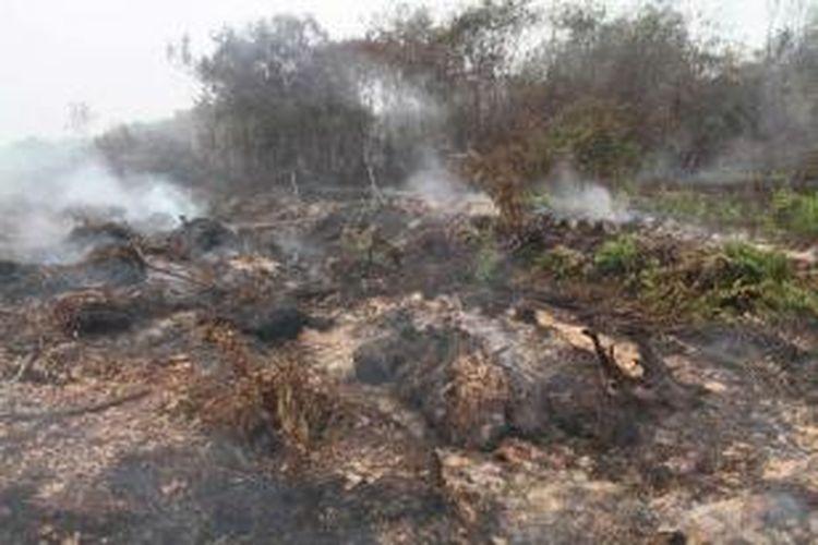 Kebakaran hutan gambut di Desa Telok Ampening, Kecamatan Kubu Raya, Kalimantan Barat, Jumat (25/9/2015).