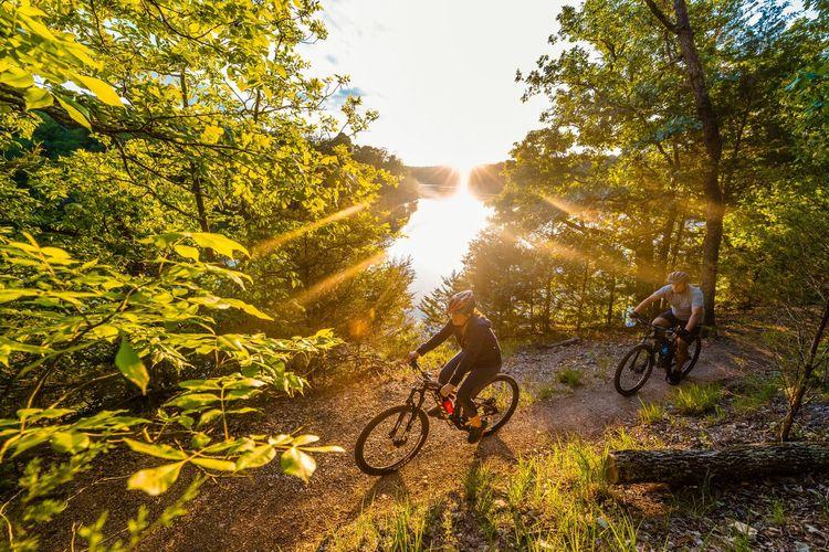 Ilustrasi sepeda - Dua orang pengendara sepeda menelusuri sebuah jalur di Hobbs State Park-Conservation Area, Northwest Arkansas, Arkansas, Amerika Serikat.