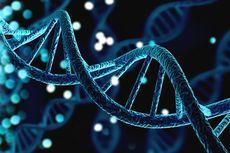 Apa Itu DNA dan Fungsinya Untuk Tubuh