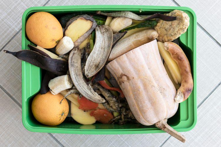 Beberapa sampah dapur dapat dimanfaatkan untuk menyuburkan tanaman.