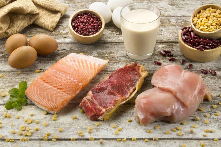 Ilustrasi protein