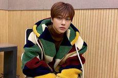 Profil Jinhwan iKON Sang 13 Cm Fairy