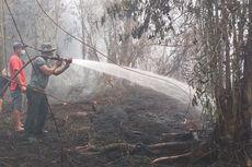 Karhutla Ancam Eksistensi Satwa di Hutan Sumatera