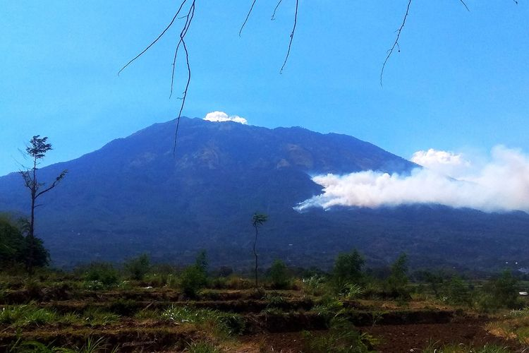 Hutan Gunung Lawu di sisi Timur tepatnya di perbatasan Desa Sukowidi dengan area perhutani terbakar Jumat siang sekitar pukul 09:30 WIB.