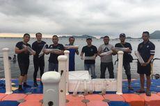 Bea Cukai Palembang Gagalkan Penyelundupan Ribuan Baby Lobster Senilai Rp 2,5 Miliar ke Singapura